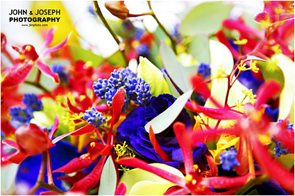 colorful flowers image
